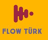flowTurk  logo ile ilgili görsel sonucu